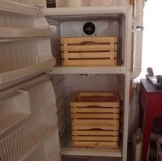 Converting a Refrigerator Into a Root Cellar